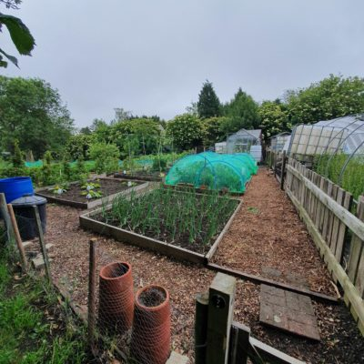 Allotment Pic1