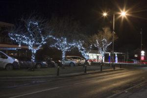 Christmas Light Display Broadway