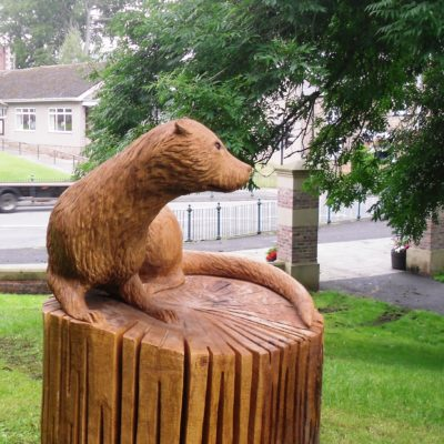 Tommy The Otter In The Park